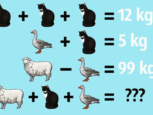 Giỏi đến mấy cũng chưa chắc giải được 8 câu đố này