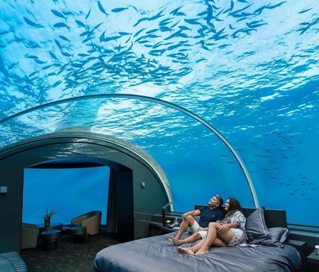 Khách sạn Conrad Maldives Rangali có phòng ngủ nằm dưới mặt nước với cửa sổ kính và trần trong suốt, giúp du khách có thể vừa ngồi trên giường vừa chiêm ngưỡng cá bơi bên ngoài biển.