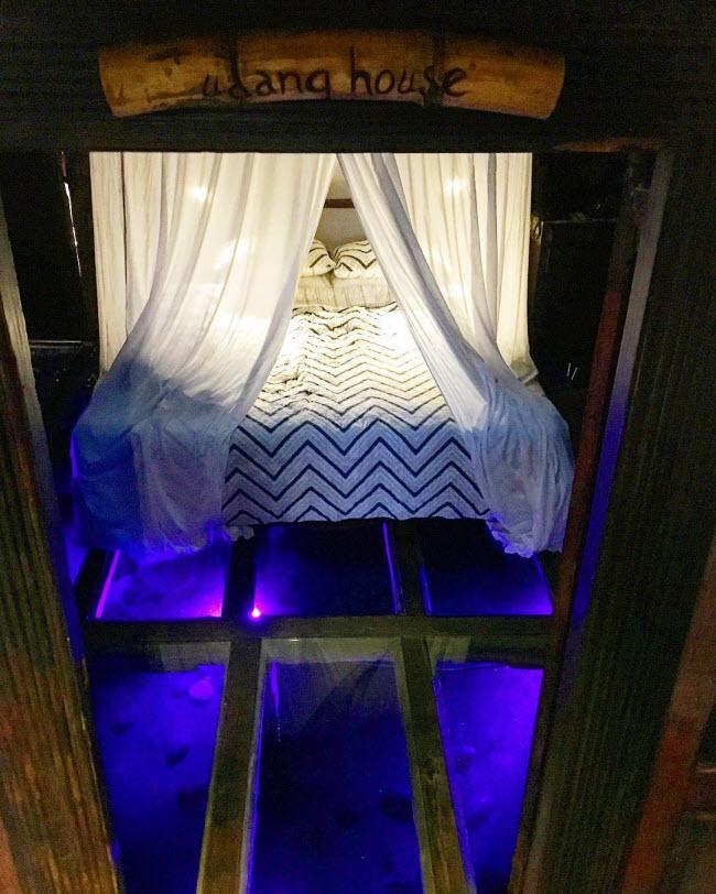 Các phòng ngủ của khách sạn được xây dựng nằm ngay trên mặt nước và có sàn bằng cách trong suốt. Nhưng bạn không cần phải lo lắng, vì các tấm kính này không thể vỡ.