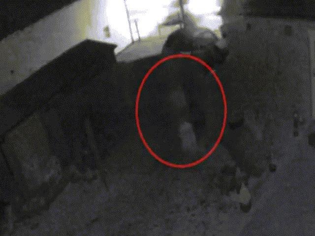 Xem lại camera gắn bên ngoài nhà, thấy cảnh rợn người lúc nửa đêm