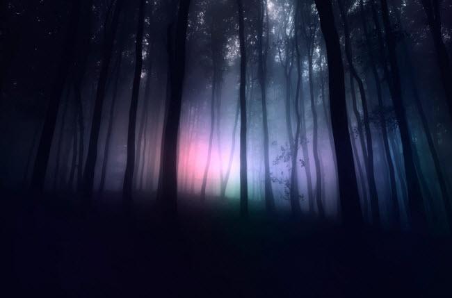 Nhiều người thừa nhận rằng họ mất cảm giác về thời gian và không biết được họ đã ở bao lâu trong rừng cũng như điều gì xảy ra ở đó.