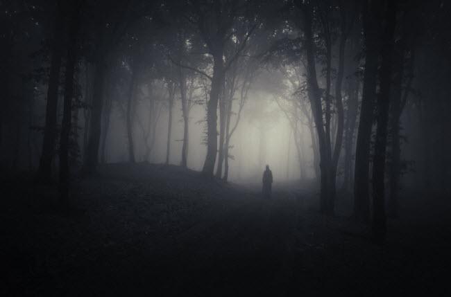 """Khu rừng đã xuất hiện trong nhiều chương trình truyền hình """"săn ma"""" ở Mỹ."""