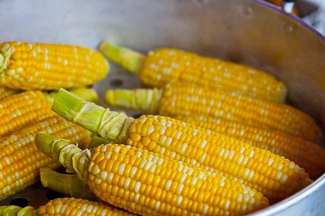 12. Ngô: So với các nguồn carbohydrate phổ biến khác như gạo, mì ống hoặc khoai tây nghiền, Ngô là loại tốt nhất cho sức khỏe và bổ dưỡng nhất.Nó giúp cơ thể tỉnh táo và tràn đầy năng lượng nhờ nồng độ chất xơ và carbohydrate cao.