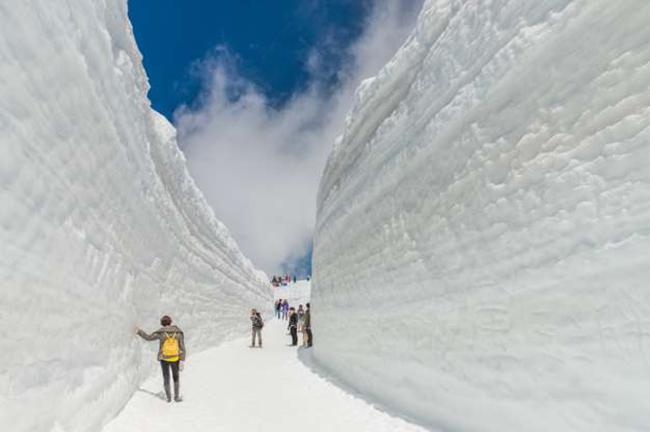 Tuyến đường Tateyama Kurope Alps, Nhật Bản: Được biết đến với cái tên Mái nhà của Nhật Bản, là một đường cao tốc xuyên qua những bức tường tuyết trên dãy núi Alps của Nhật Bản.