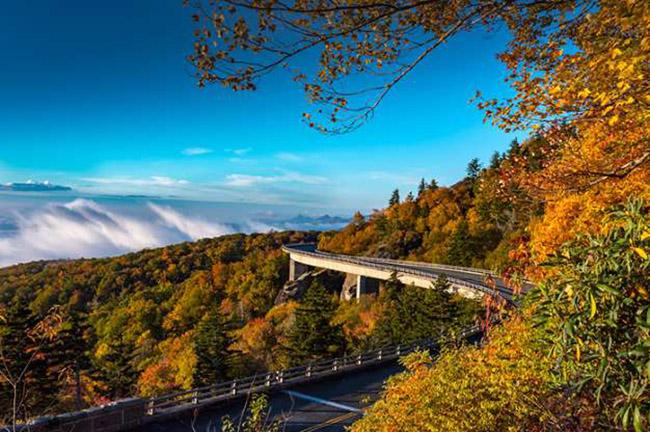 Blue Ridge Parkway, Bắc Carolina và Virginia: Đường Blue Ridge Parkway dài 469 dặm chạy dọc theo cột sống của dãy núi Blue Ridge. Nó cung cấp một trong những hình ảnh đa dạng nhất trên thế giới về hệ thực vật và động vật.