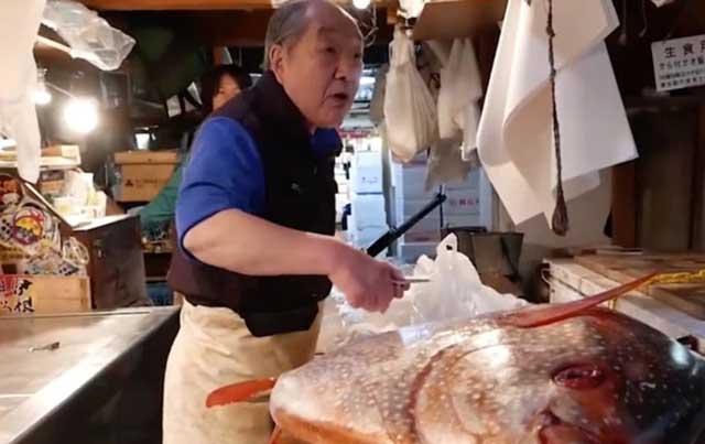 Loài cá khổng lồ siêu đắt đỏ được người Nhật săn lùng quanh năm - 1