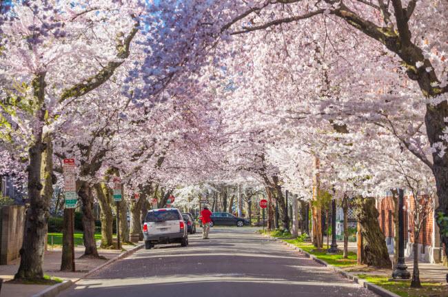 New Haven, Mỹ: Thành phố ven biển ở bang Connecticut có một chương trình hỗ trợ cư dân mới lên tới 80.000 USD để sửa chữa nhà ở của họ. Thêm nữa, thành phố còn miễn học phí học đại học cho các học sinh tốt nghiệp trường công lập cũng như các suất học bổng hằng năm.