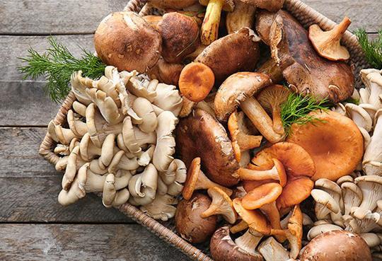 Ăn 2 bữa nấm 1 tuần nhận ngay lợi ích sức khỏe thần kỳ - 1