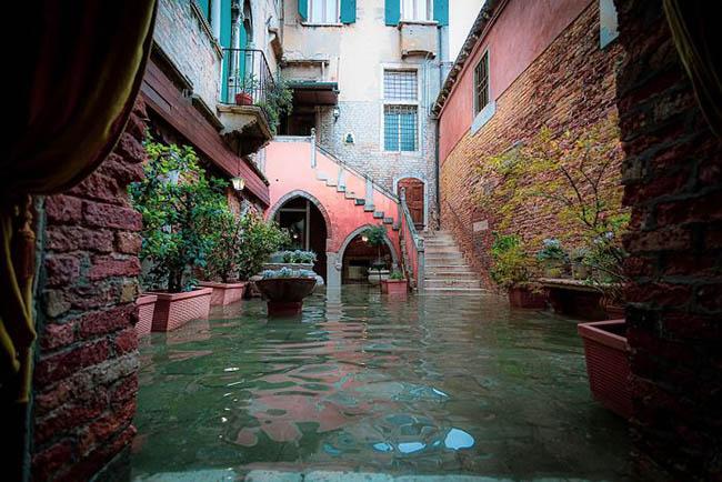 1. Ngày 21.12.2019, ngay sau khi nhận tin Venice ngập lụt, nhiếp ảnh gia người Ý Natalia Elena Massi đã khăn gói hành lý đến nơi này để khám phá thành phố nổi tiếng mộng mơ bây giờ như thế nào.