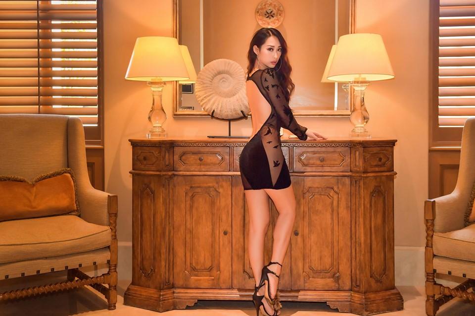 Mỹ nhân Việt sở hữu biệt thự 25 triệu đô lên tiếng về bộ váy lưới - 1