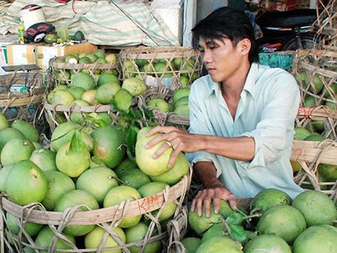 Chưa đến Tết, hàng loạt trái cây đã tăng giá mạnh - 1