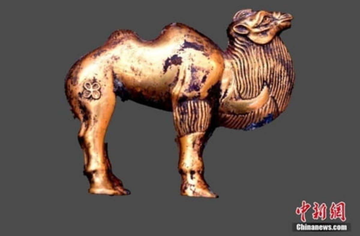 Ngắm lạc đà vàng cùng nhiều báu vật mới được tìm thấy tại khu lăng mộ Tần Thủy Hoàng - 1