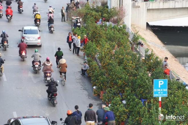 Vỉa hè, sân nhà ga đường sắt trên cao Cát Linh - Hà Đông thành chợ hoa Tết - 9