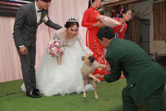 Chú chó lao lên sân khấu đòi chụp ảnh với cô dâu nhưng bị bế xuống, vẻ mặt khiến tất cả không thể nhịn cười - 1