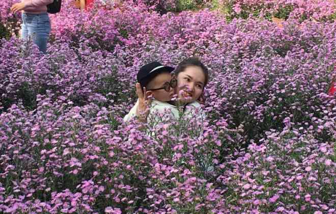 """Ùn ùn """"check-in"""" vườn hoa thạch thảo ở Cần Thơ - 7"""