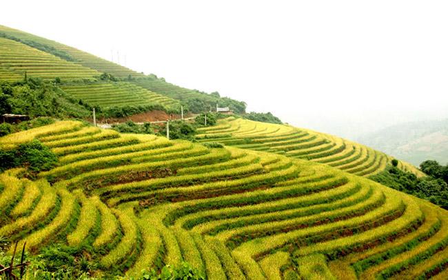 5 ngọn núi của Việt Nam nổi tiếng trên báo Tây - 1