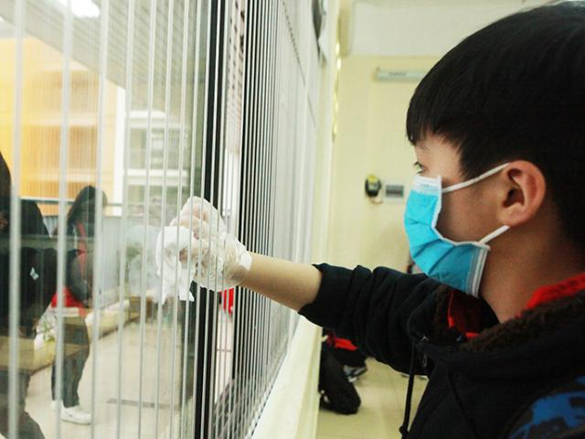 Gần 200 du học sinh từ Vũ Hán về Việt Nam, chưa có người bị nhiễm virus Corona