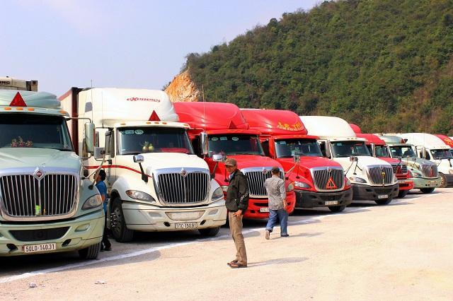 Hàng trăm container nông sản nằm chờ ở cửa khẩu: Nhà nông lao đao vì dịch Corona - 1