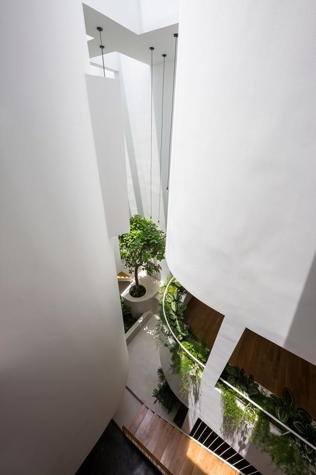 Ánh sáng từgiếng trời tràn vào nhà, tạo hiệu ứng ánh sáng liền mạch, không bị gián đoạn bởi các bức tường thẳng.