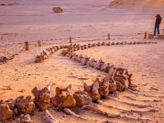 """Du lịch - Những nơi trên thế giới... đào đâu cũng thấy """"quái vật"""""""