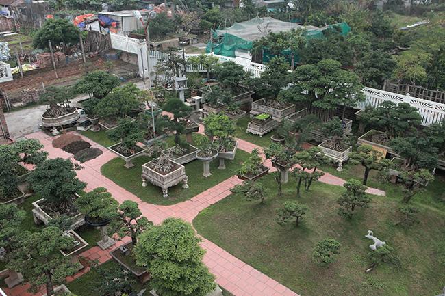 Khu vườn rộng hơn 2000m2 của ông Nguyễn Trọng Thành (Yên Sở, Hoàng Mai) gồm hơn 200 cây cảnh nghệ thuật thuộc hàng quý hiếm ở Việt Nam. Ông từng khiến giới chơi cây phải kiềng nể khi sẵn sàng bán cả căn nhà để mua được chậu cây ưa thích