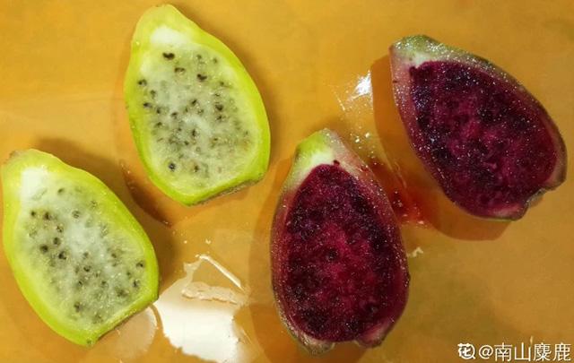 Không ngờ loại cây toàn gai góc, tưởng không thể ăn được lại cho loại quả cực ngon, bổ dưỡng - 2