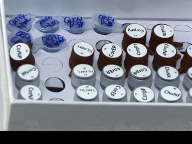 Bộ kit phát hiện virus corona của Việt Nam có gì đặc biệt mà nước ngoài thi nhau mua?