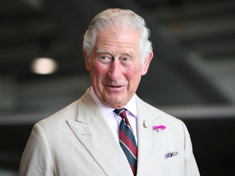 Thái tử vừa dương tính với Covid-19 của Vương quốc Anh giàu đến mức nào? - 1