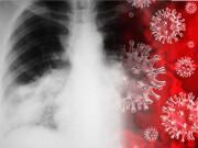 Tin tức sức khỏe - VTV1, HTV7 đồng loạt đưa tin: cách khống chế đờm, ho, khó thở bằng thảo dược