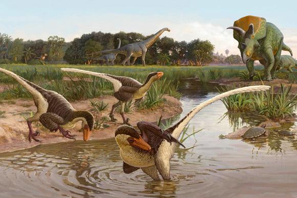 """""""Quái vật"""" ăn thịt nửa vịt, nửa thằn lằn hiện ra trong mộ đá 67 triệu năm - 1"""