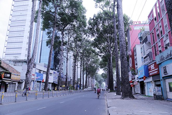 Lặng ngắm một Sài Gòn rất khác, không ồn ã trong sáng đầu năm mới - 6