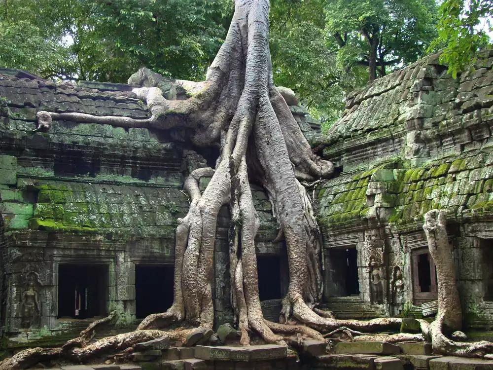 Việt Nam lọt top những phong cảnh đẹp nhất thế giới - 46