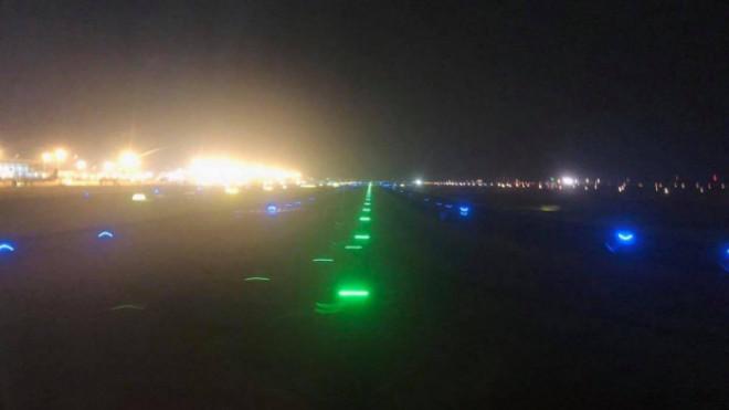 Máy bay phải bay chờ hạ cánh vì nghi mèo chạy qua đường băng - 1