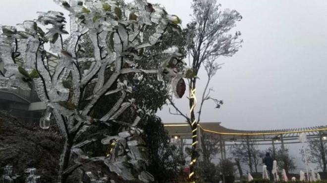 Tuyết trắng bao phủ nhiều nơi ở tỉnh Lào Cai - 1