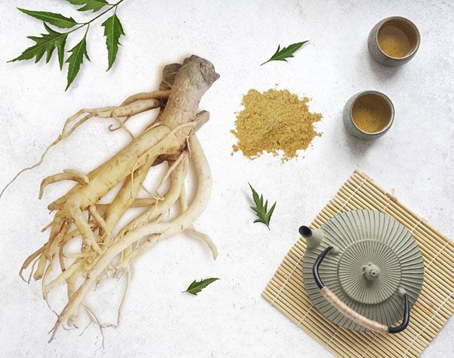 GoldenDila từ tinh chất Đinh lăng chuẩn hóa, món quà sức khỏe ý nghĩa Tết Tân Sửu 2021 - 1