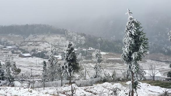 Ảnh: Tuyết rơi phủ trắng Y Tý và Sa Pa, ngỡ như lạc bước ở trời Âu - 3