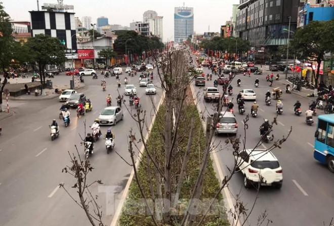 Qua ba mùa rét, hàng phong trồng tại Hà Nội vẫn chưa đỏ lá - 1