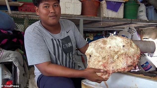 Thái Lan: Tưởng nhặt được đá, xem kỹ không ngờ là báu vật hàng tỷ đồng - 1