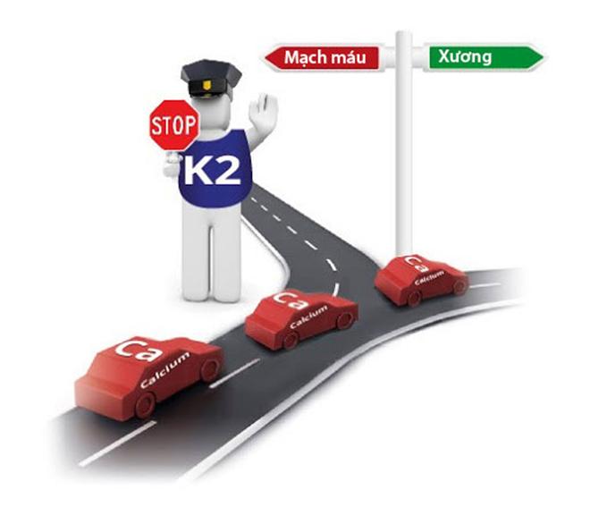 """Phát hiện bất ngờ: Vitamin K2 không chỉ giúp trẻ tăng chiều cao vượt trội mà còn """"đẩy lùi"""" sâu răng - 1"""