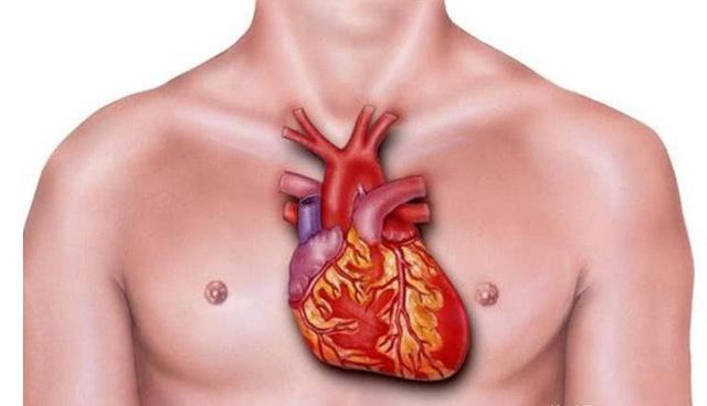 3 đặc điểm nhận biết bệnh nhồi máu cơ tim và 4 kiểu người tốt nhất nên đi kiểm tra - 1