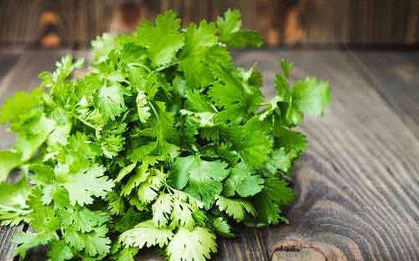 Rau mùi không chỉ mang hương vị Tết đến từng món ăn mà còn là bài thuốc quý giá - 1