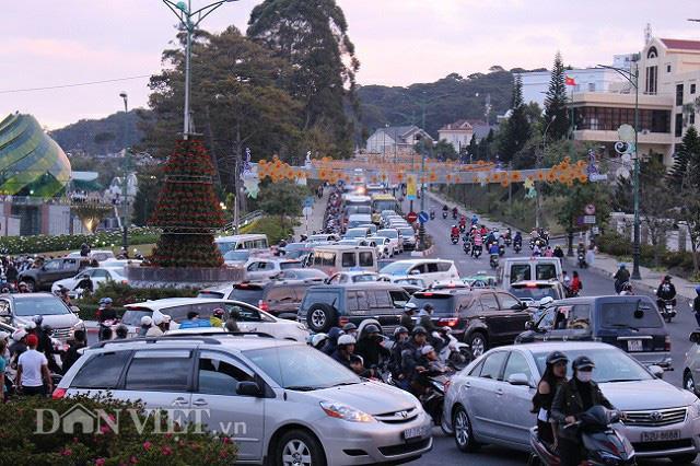 Thưởng 1 tỷ đồng cho ý tưởng chống ùn tắc giao thông tại thành phố Đà Lạt - 1