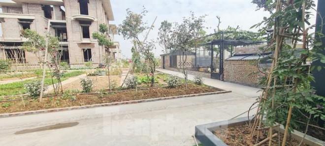 Biệt thự nuôi gà, trồng rau ngoại thành Hà Nội bất ngờ được thổi giá dựng ngược - 13