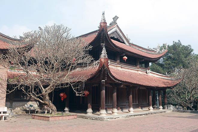 Chánh điện làm từ 600m3 gỗ lim ở Hà Nội - 1