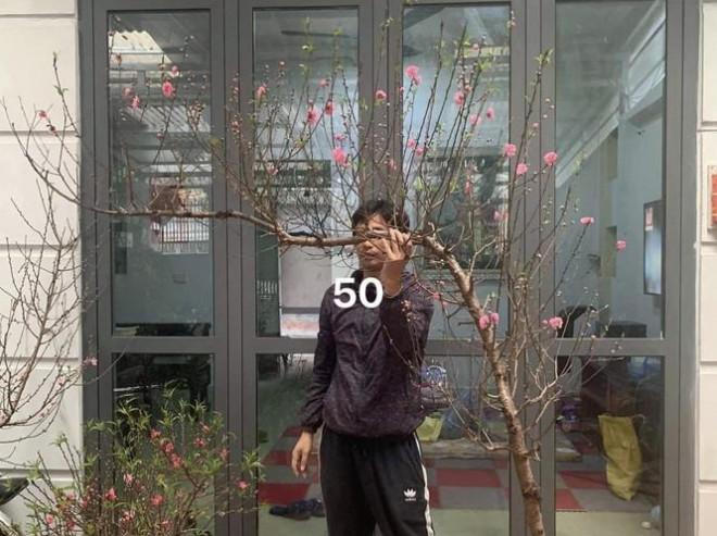 Tiểu thương đua nhau livestream rao bán cây lạ, hoa đẹp - 1