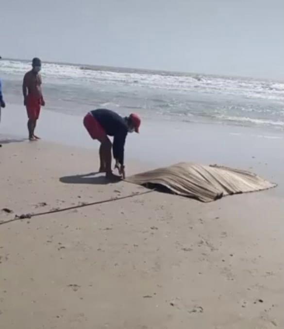 Đang tắm biển, du khách hốt hoảng la hét vì thấy một thi thể trên biển - 1
