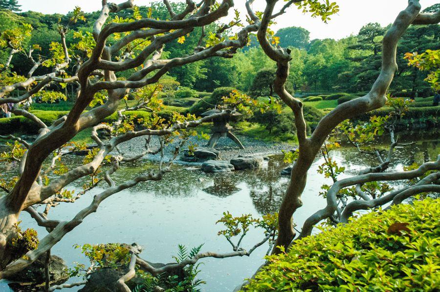 Mùa xuân châu Á cũng khiến du khách say lòng người bởi những cảnh đẹp này - 13