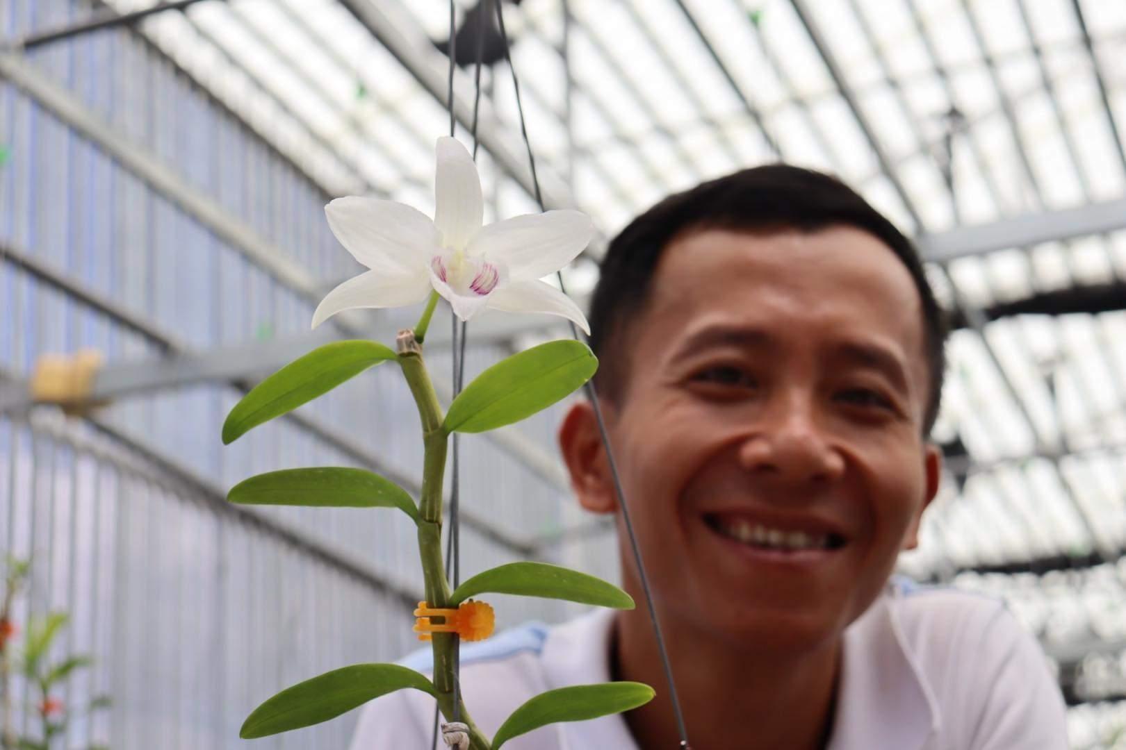 Trần Quang Duy và đôi bàn tay khéo léo của người yêu phong lan - 1