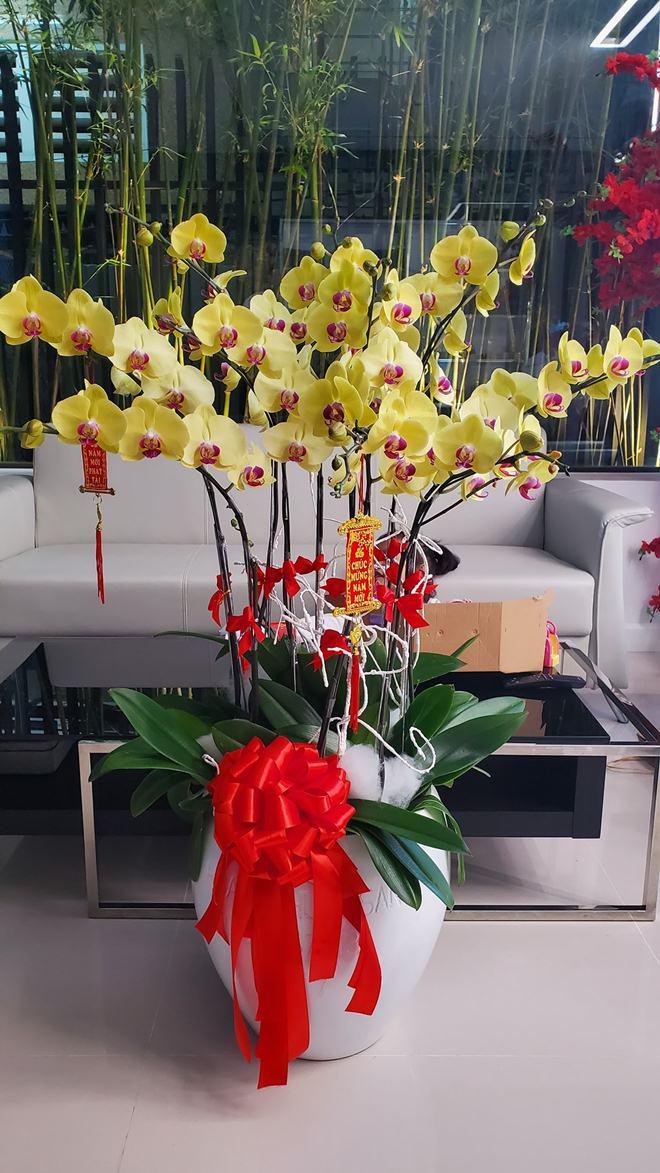 """Cơ ngơi khủng ở Việt Nam của """"vợ Hoài Linh"""" bị đồn là đại gia ngầm trong showbiz - 9"""