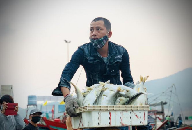 Vươn khơi đầu năm, ngư dân phấn khởi trúng đậm tôm, cá - 1
